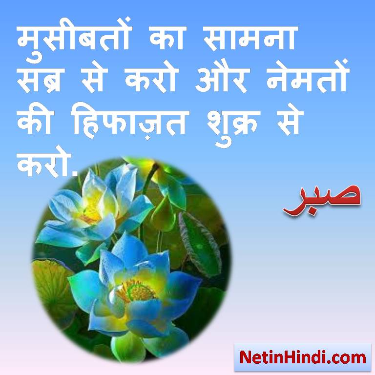 Sabr status and quotes in hindi - Islamic Quotes in Hindi with Images